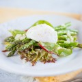 Poached egg aspergus salad 120x120 - White asparagus and Serrano ham