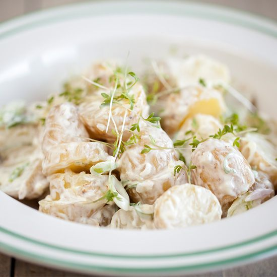 Baby potato salad square - Chicory with ham and cheese sauce