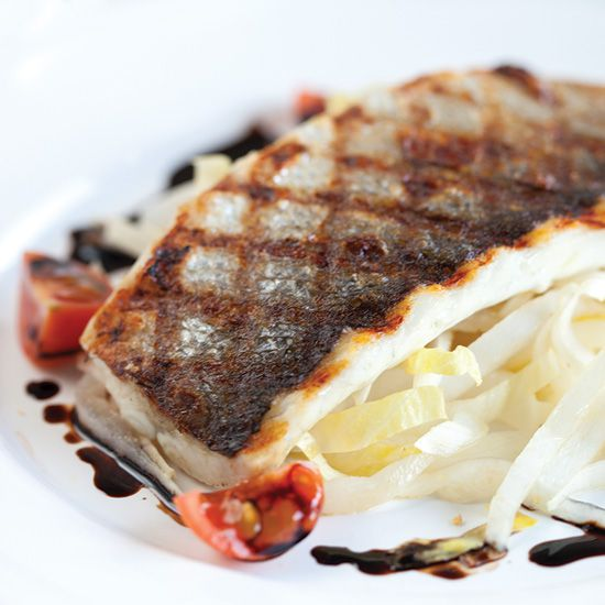 Sea bass balsamico and chicory square - Sea bass balsamic vinegar and chicory