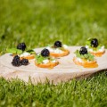 Wild blackberry crostini with goat cheese 120x120 - Apple and manchego crostini