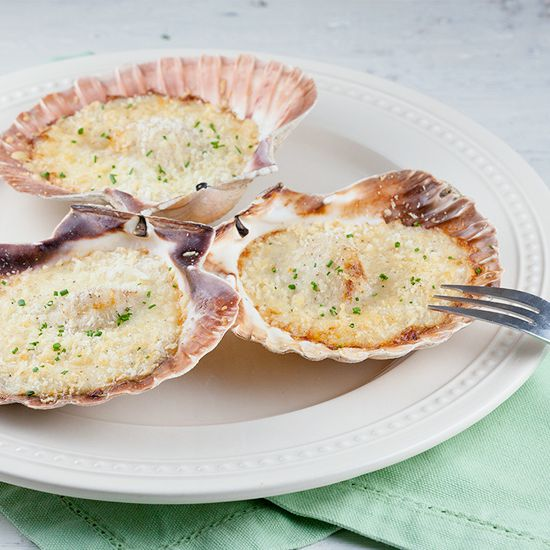 Fresh scallops in bechamel sauce