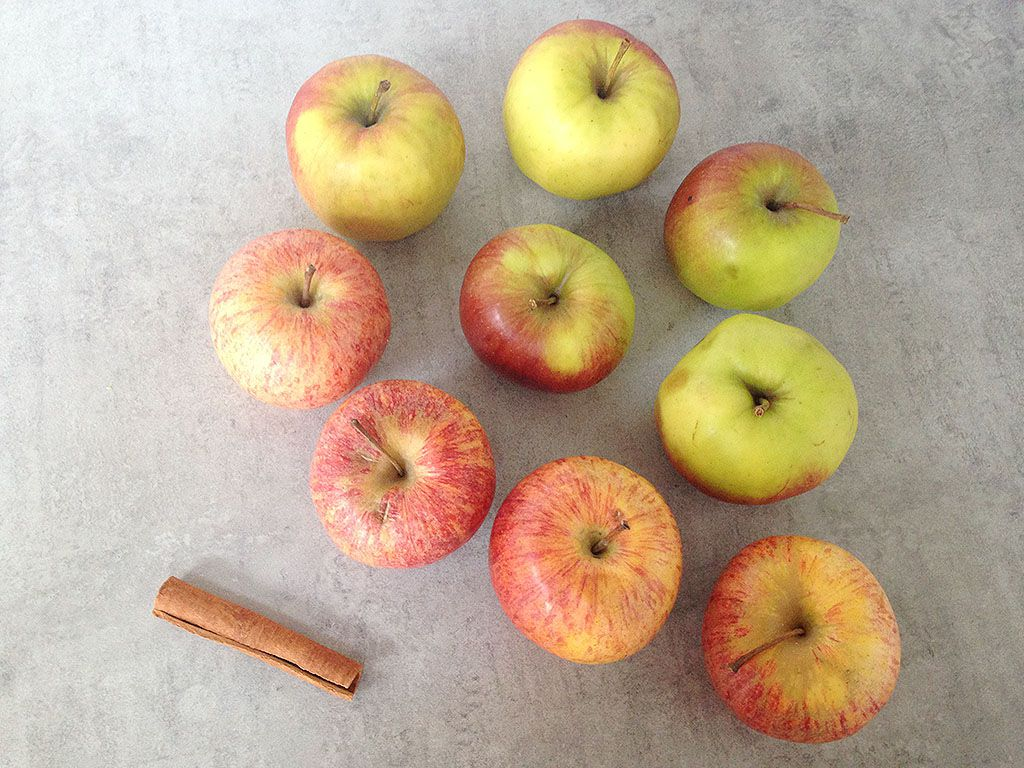 Home-made apple sauce ingredients