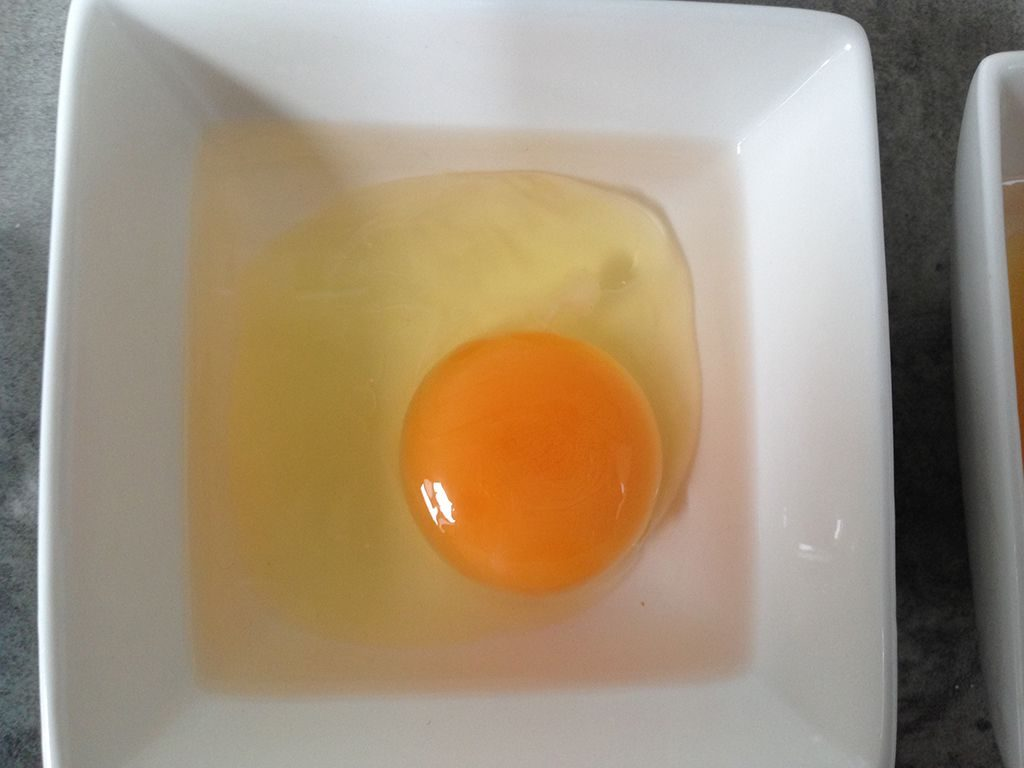 Egg in vinegar