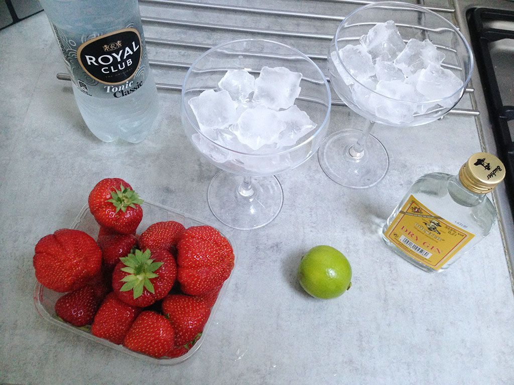 Strawberry lime Gin and Tonic ingredients