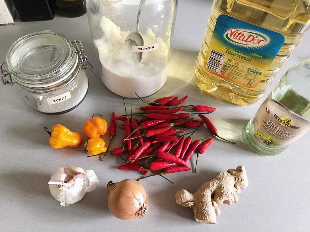 How to make sambal ingredients 1024x768 - How to make sambal