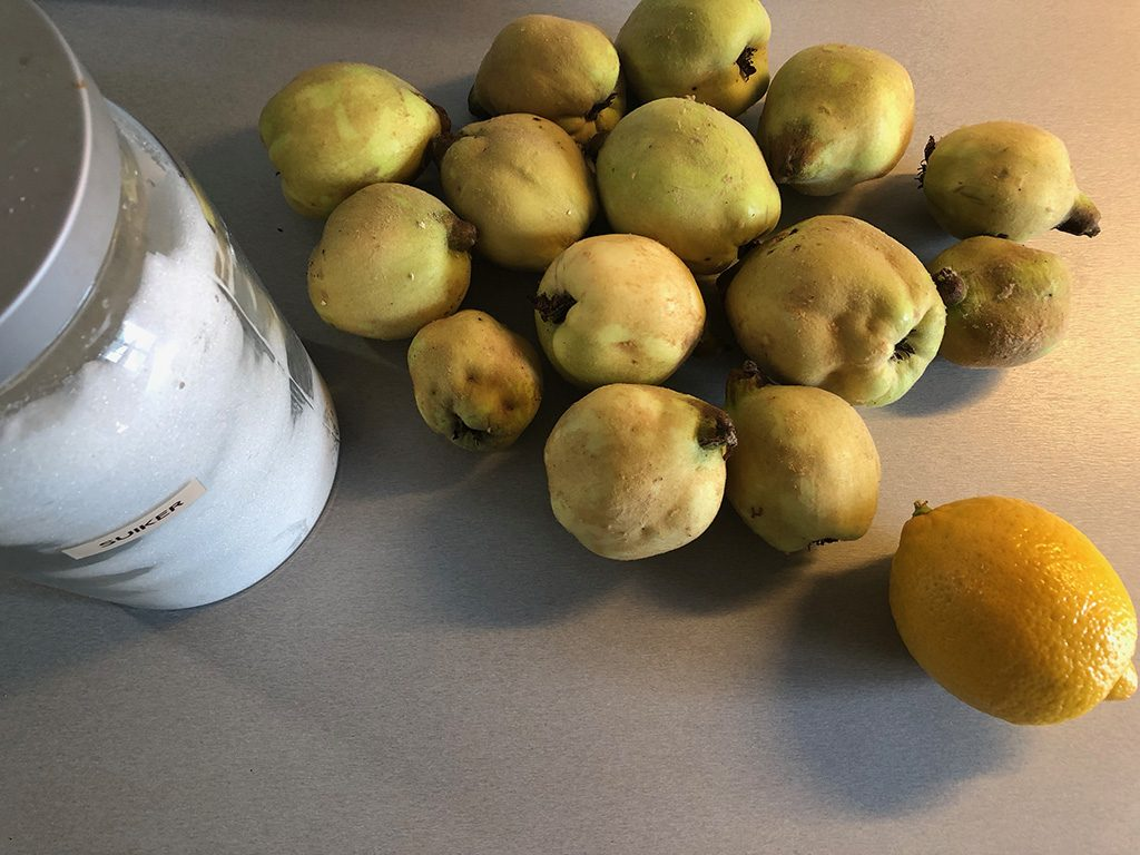 Quince jelly ingredients